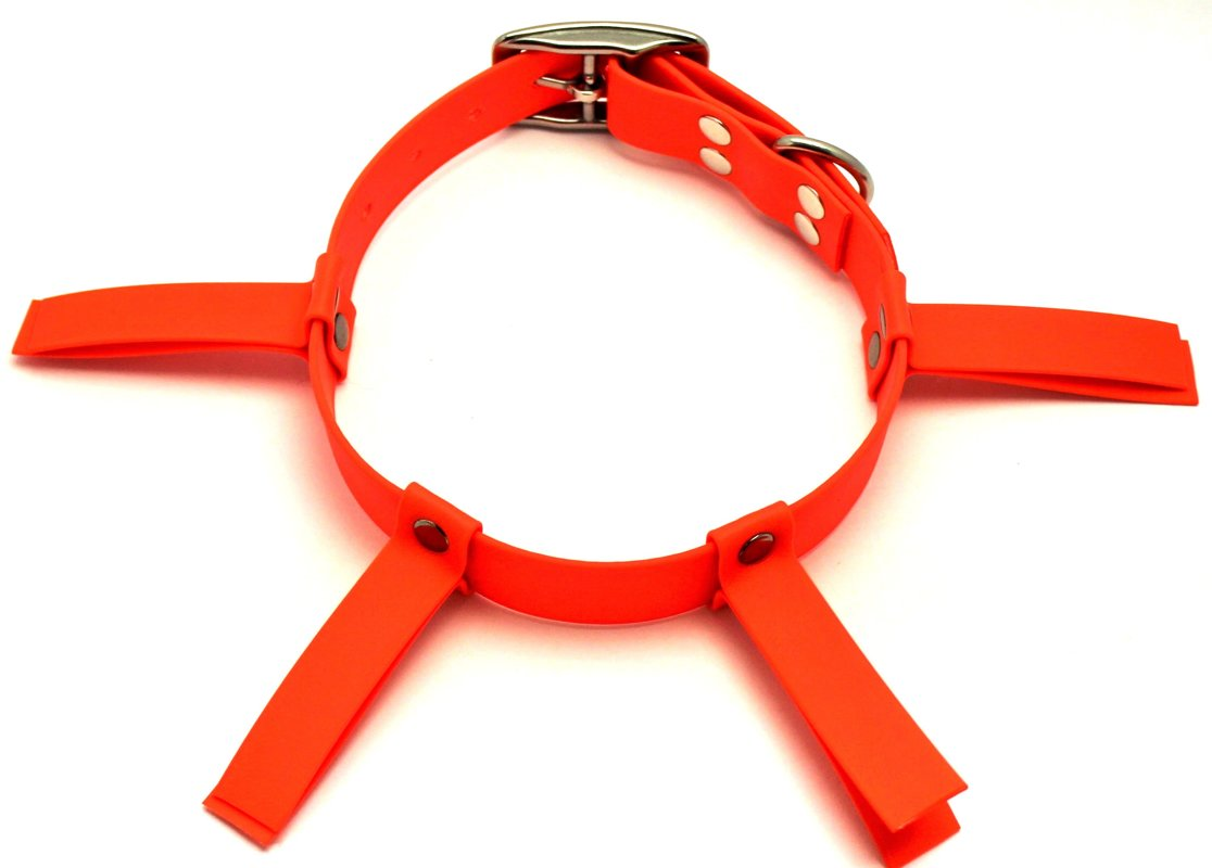 Dog hunting collar orange, width 2.5 cm