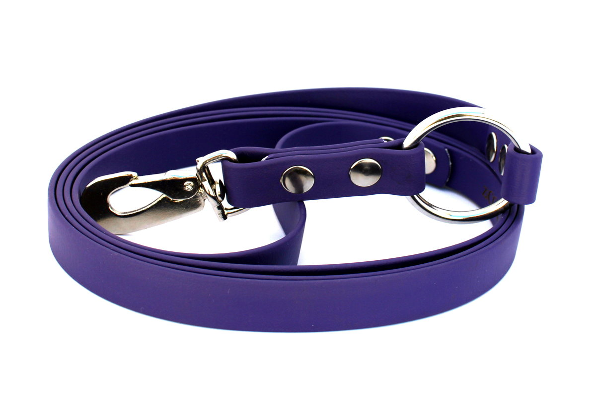 Anti-pull leash