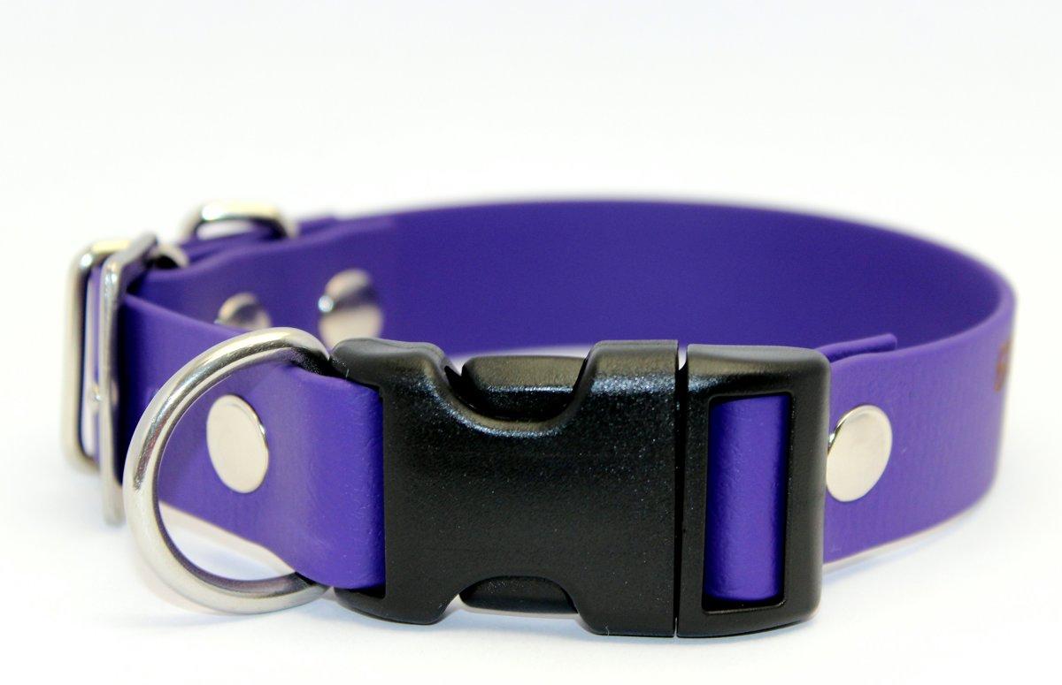 Dog collars Combo 1, width 2.5 cm